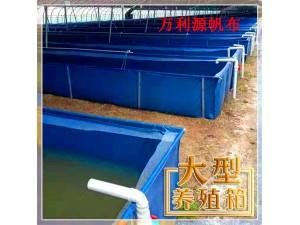 养殖龙虾帆布水池 大型户外室内养殖锦鲤鱼池池