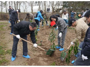 上海周边植树  长兴岛团队植树娱乐套票性价比高