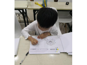 济南记忆力训练加盟-爱知七田教育