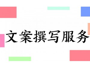 项目策划深圳项目策划代写项目策划