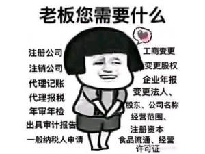 上海全区代理记账等各项企业服务