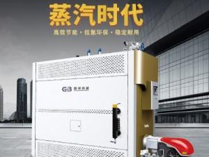 国邦低氮冷凝节能环保型燃气(油)蒸汽发生器