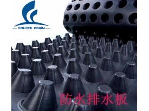 HDPE塑料排水板东营块状排水板工厂直销