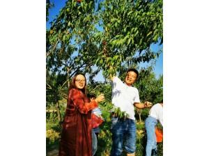 长沙县胖仔农庄有机蔬菜水果采摘一日游