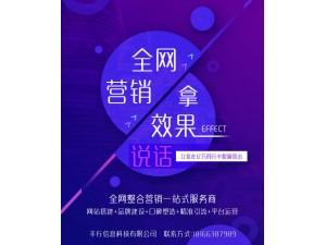 重庆(SEO,SEM,信息流,网站建设)整合一站式服务商