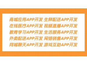 电脑销售APP开发能自己组装吗